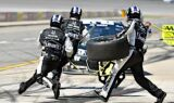 Jimmie Johnson takes the checkered flag at Michigan