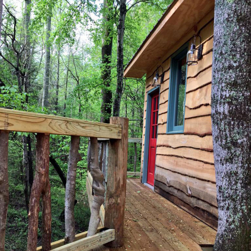 treehouse masters beehive concord nc this friday dale earnhardt jrs very own getawayinthesky will be featured on treehouse masters the show from which he gleaned treehouse masters friday night hendrick