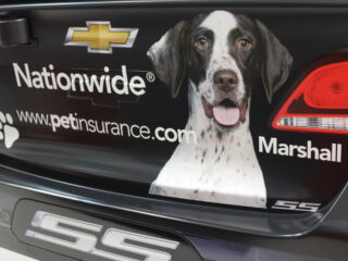 People.com showcases Earnhardt's love of dogs, reveals Nationwide Paws and Racing winner