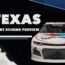 Paint Scheme Preview: Texas